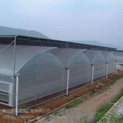 蔬菜花卉智能连栋薄膜温室大棚骨架工程施工现场加工盛鸿温室