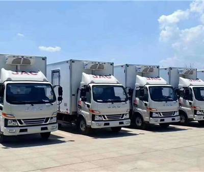 保温活鲜货车 冰淇淋运输车冻鱼运输车