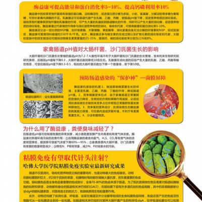 深圳降低饲料消耗酶益康哪里有卖 酶益康