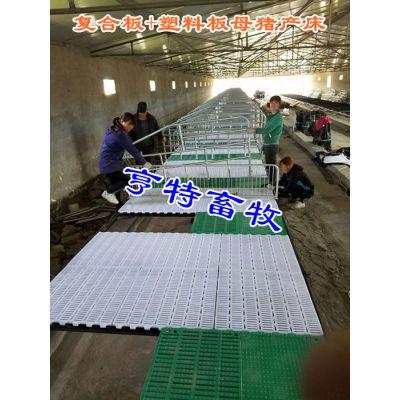 铸铁板双体母猪产床养猪设备厂家质量可靠