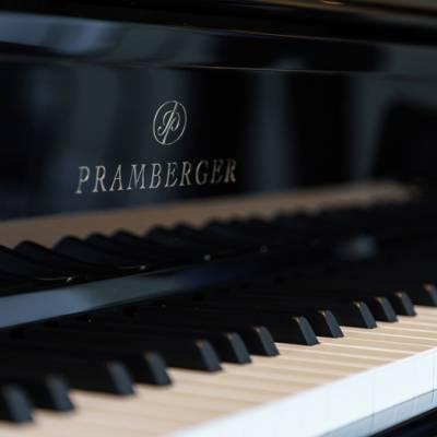 钢琴批发定制-株洲钢琴批发-买钢琴,找长沙蓝音(查看)