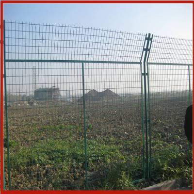不锈钢道路隔离护栏网 双边丝护栏网企业 四川桃型柱围栏网
