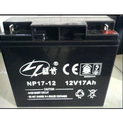 蓝肯蓄电池NP12-12技术参数 现货供应