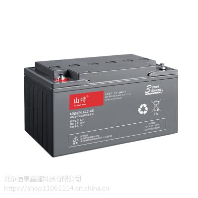 山特电池C12-65免维护铅酸蓄电池12V65AH 不间断电源UPS专用