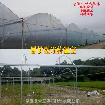 连栋温室薄膜连栋棚蔬菜大棚种植育苗大棚设计建造厂家