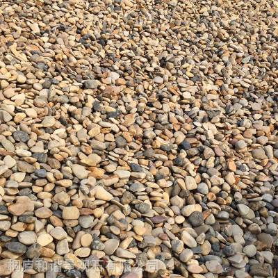 天然鹅卵石 鹅软石 卵石 铺路 变压器专用3-5-8-12