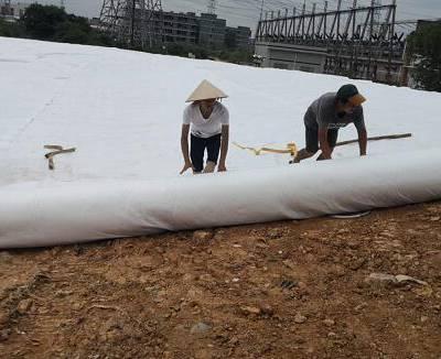 hdpe土工膜价格-土工膜-硕泰、东莞土工膜厂家(查看)