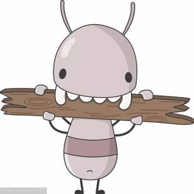 家里的白蚁分飞,家里有白蚁怎么办,南昌洁鹏专业治理白蚁