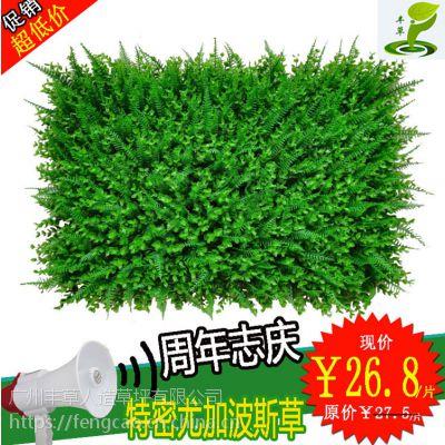 特密尤加利波斯草人工塑料花假草皮水果地毯装饰仿真植物绿植墙