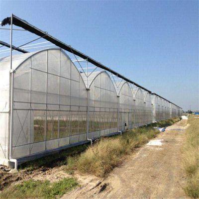 贵州连栋玻璃温室大棚的生产厂家 盛鸿温室一站式打造设计