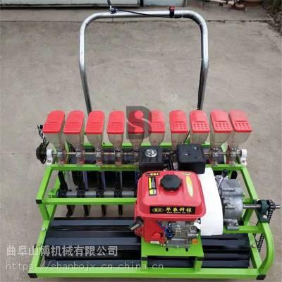 汽油自走式油菜洋葱精播机 6-12行菠菜精密种植机