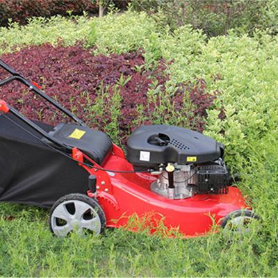 绿化带草皮修剪机 轻便省人工割草机 作业稳定草坪机