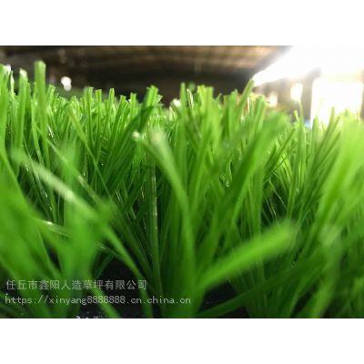 浙江人造草坪地毯 厂家一手 多种多样