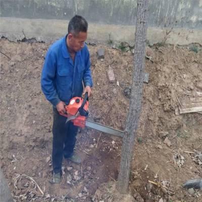 苗木断根机挖树机 树木移栽机生产厂家