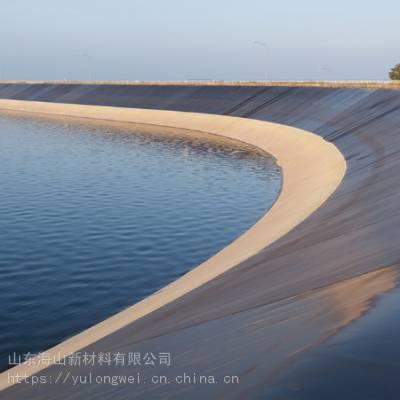 厂家直销优质防渗膜 海水养殖垃圾填埋复合土工膜