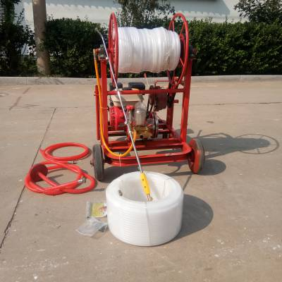 质量可靠玉米杀虫除草喷雾器远射程大容量草莓大棚打药机