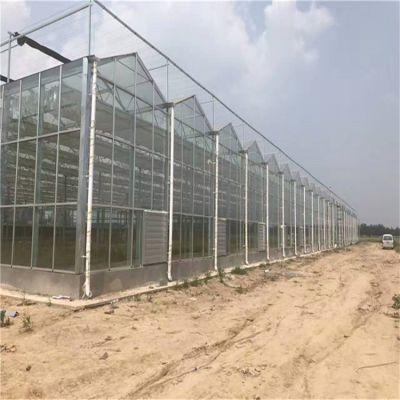 河北孝感玻璃温室大棚建设施工 设计安装