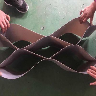 塑料格室-性能塑料格室-蜂格工程材料(优质商家)