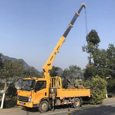 厂家直销小型园林绿化专用吊机 豪曼国五直臂蓝牌5吨随车吊