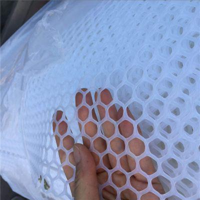 小鸡床垫塑料网 聚乙烯塑料养殖网 白色养殖网