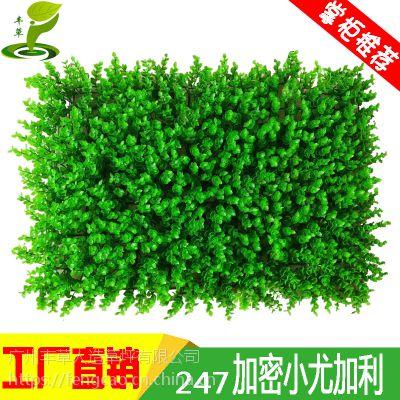 丰草直销247小尤加利塑料花假草坪店铺办公场所户外室内装饰仿真植物绿植墙