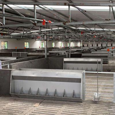 厂家自产自销不锈钢料槽 养猪专用