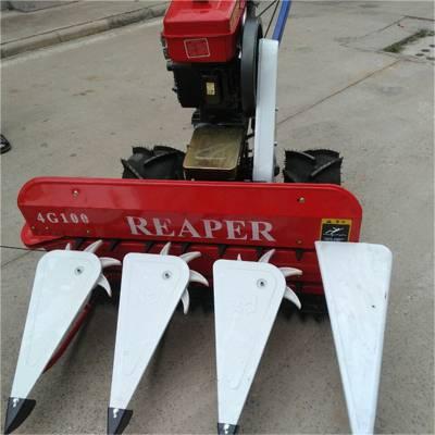 四轮前置割台报价 120/150型芦苇收割机 云南麦草割晒机