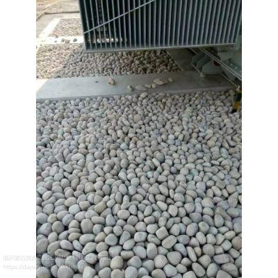 焦作鹅卵石水处理鹅卵石滤料承托层找哪家