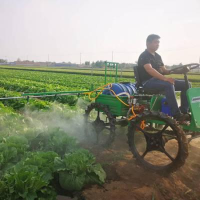 农用果园打药机自走式喷雾器 农用汽油打药机 志成200L汽油打药机