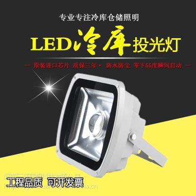 大型冷链物流专用灯 70W进口芯片高效节能耐低温瞬间启动