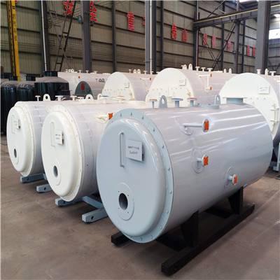 陕西铜川生物质蒸汽发生器价格多少 利雅路锅炉 型号齐全
