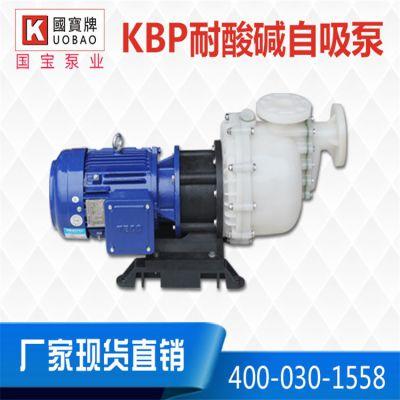 塑料卧式自吸泵 客户的共同选择 国宝耐腐蚀自吸泵