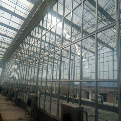 保温性能好广东尖顶玻璃温室大棚的供应商哪里的更权威