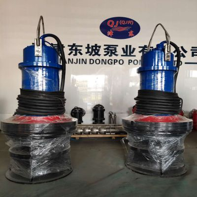 东坡轴流泵-大流量低扬程潜水轴流泵铸铁