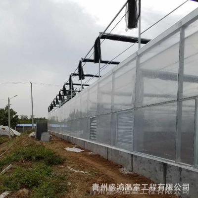 阳光温室 供应安装连栋薄膜阳光温室钢架 镀锌管供应温室专业设计