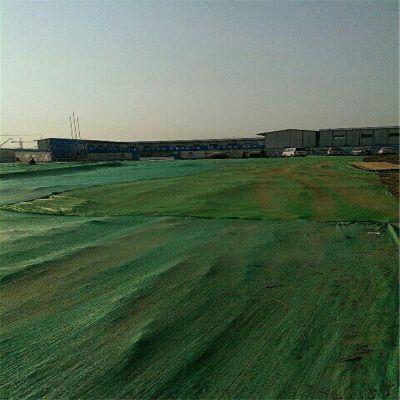 渣土覆盖网 防尘绿网 盖土绿网