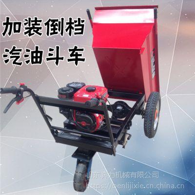 小路上用的运输机械 工程转运沙石斗车 奔力FD-MT4