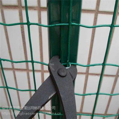 养殖荷兰网 硬塑荷兰网 圈地铁丝网
