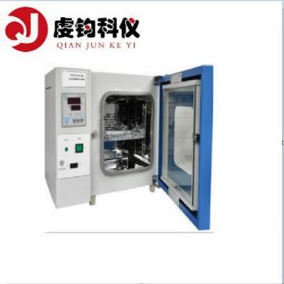 DHG-9203A电热鼓风烘箱220L