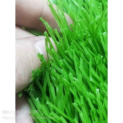 供应辽宁幼儿园 仿真地毯草坪室内外草坪彩虹跑道