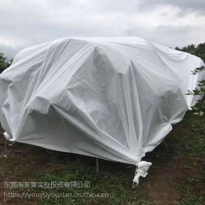 广东厂家直销 老农心愿防寒布 果树防寒防冻布 大量现货也可制定