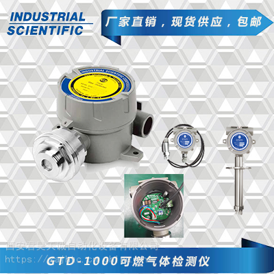 GTD-1000Tx氧气和有毒气体检测仪