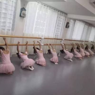 渭南学校压腿杆厂家 舞蹈把杆 厂家直供 安装简单