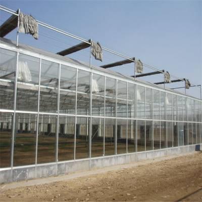 承建玻璃温室 阳光板连栋温室 智能玻璃温室大棚 龙鑫温室