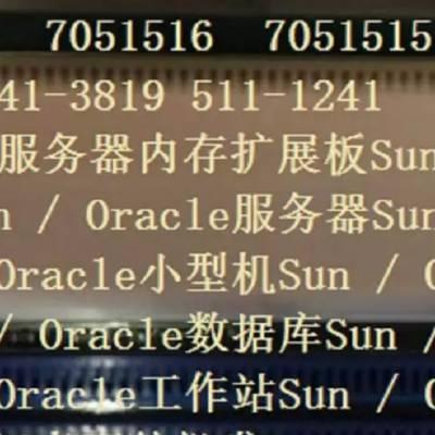 Sun Oracle 7051516 541-4438 511-1672 T4-2服务器内存扩展板