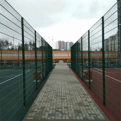 河北围栏厂家供应双边丝围栏草场围栏网电焊网隔离栅场地防护网
