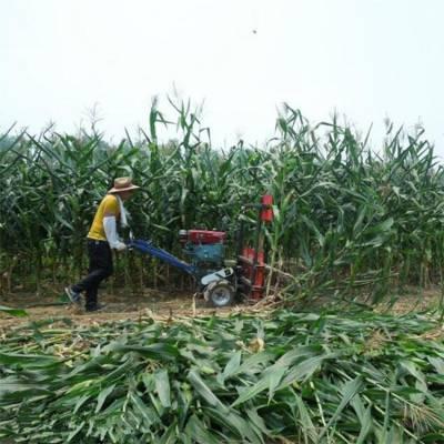 手扶割晒机厂家 自走式单株农作物割杆机 单人多行割草机