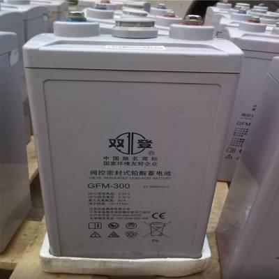 连云港双登电池6-FMX-100B批发价格