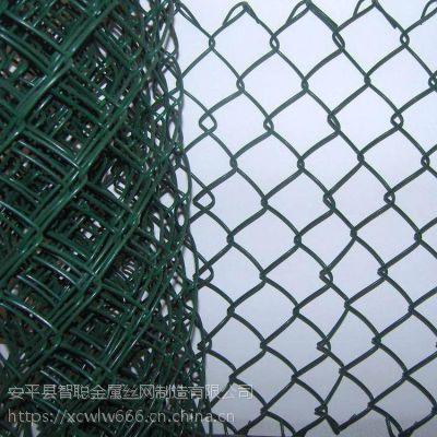 广东包胶勾网工厂 pvc菱形网生产
