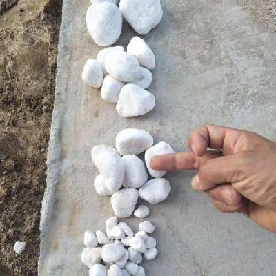 5-8厘米纯白色鹅卵石多少钱一吨,河北yabo88下载白色鹅卵石批发
